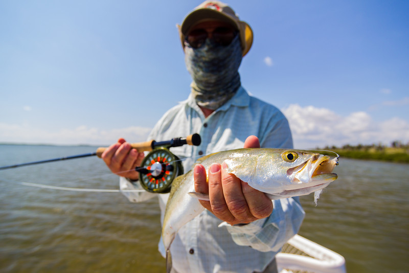 IMAGE: http://shanejennings.smugmug.com/Outdoors/South-Padre-Fishing-2012/i-LKB82xk/0/L/IMG0916-L.jpg
